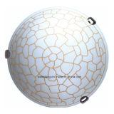 Runde schöne Glasdecken-Lampe mit Glas für Schlafzimmer