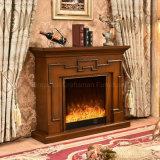 現代ホテルの家具の電気暖炉(342)