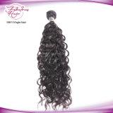 Trama por atacado do cabelo humano de Remy do cabelo do Virgin do vison da classe 7A/8A