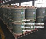 """ASTM eine 475 Ehs Kategorie 1/4 """", 3/8 """", 5/16 """", 1/2 """" galvanisierter Stahldraht-Strang"""