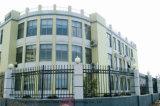 Rete fissa d'acciaio galvanizzata giardino decorativo elegante di alta qualità 6 di obbligazione di Haohan