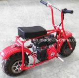 EPAの青年小型バイクは普及したデザインの中国の工場から承認した