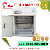 Am besten, 176 Ei-industrielle Huhn-Ei-Inkubator-Eier (YZITE-4) verkaufend