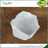 Баки мешка засаживать вала мешка сада Onlylife 40*50cm новые Thicke белые Non-Woven