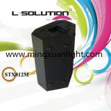 Bidirektionales passives Stx812m, das im Freienfelsen-Lautsprecher hängt