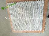 Mosaicos de mármol blancos de Cararra del hexágono