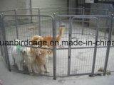 Penne resistente 80 x 80cm di esercitazione di allegato del cane di animale domestico dei 8 comitati