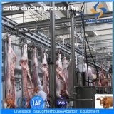 2016 Cattle Slaughter Machinery with Equipments List