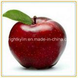 425g-3000g Sell quente Apple enlatado com HACCP
