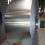Bobine d'acciaio del nastro laminate a freddo en del acciaio al carbonio di BACCANO