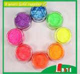 Exterior Wall Glitter PaintのためのバルクGlitter Glitter Powder