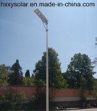 China Luz de alimentación integrada LED de alta calidad 6W LED de la luz del jardín