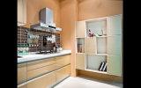 2016 armários de cozinha personalizados Rta modernos da laca (ZS-843)