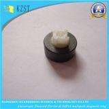 Кольца впрыски феррита мультипольные магнитные с высоким гауссом