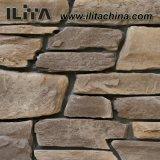 壁のタイルによって培養される石のための玉石の石