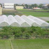 Сеть фруктовой мухи насекомого/метра HDPE+UV анти-