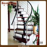 Самомоднейшая изогнутая лестница Railing штанги стальная деревянная прямая (SJ-H816)