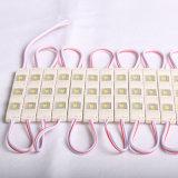 Muestras de la carta de canal con 5730 módulos de 3SMD LED