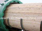 Autoclave de madeira industrial de Antisepticise para a grande capacidade