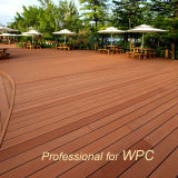 Wood durable Plastic Composite Decking WPC Board avec l'Europe Standard