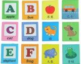 형식 다채로운 빨 수 있는 아기 의상 책
