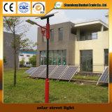 高品質の太陽電池パネル(12W~30W)が付いている太陽街灯
