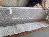 Chinesischer GranitG664 Countertop