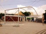 Fabbrica della tenda del partito della tenda foranea di cerimonia nuziale di Arcum delle 1000 genti
