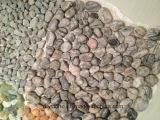 De la raya piedra del azulejo de la pared de piedra de la puerta hacia fuera mini