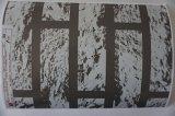 最もよい品質の印刷の鋼板