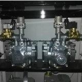 Benzina Satation di due pompe e due contatori e quattro visualizzazioni dell'affissione a cristalli liquidi