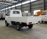 EEC는 한 택시와 전기 픽업 트럭을 승인