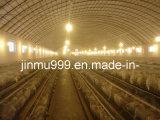 닭을%s 강철 프레임 닭 가금 장비 감금소