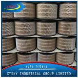 Luftfilter 17801-0c010/Xtsky mit Qualität (17801-0C010)