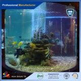 高い過透性が付いている装飾的で、明確または多彩なプレキシガラスの魚飼育用の水槽