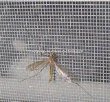 Schermo della mosca del poliestere di DIY