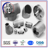 Butt soudés en acier inoxydable sans soudure Pipe Fitting Grand Od