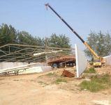 産業物質的な鉄骨構造デザイン養鶏場の小屋のニワトリ小屋