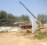 Industrielles materielles Stahlkonstruktion-Entwurfs-Geflügelfarm-Halle-Huhn-Haus