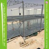 Qatar-Projekt-gutes bewegliches Fertigstahlhaus
