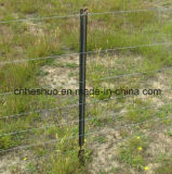 Star barato Pickets Posts (poste de Australian/NZ Style Y)
