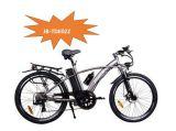 Elektrischer Fahrrad-Naben-Bewegungselektrisches Fahrrad Pedelec (JB-TDE02Z) des BergMTB