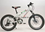 高品質はからかうバイクの若者MTBの自転車涼しいBMX (FP-KDB-17059)を