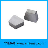 Magneet van SmCo van het Trapezoïde van de Hoeken van de magneet de Fabrikant Rond gemaakte