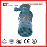 Het regelen van Elektrische AC van de Inductie van de Snelheid Motor met Hoogspanning