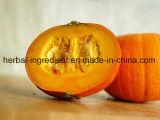 Порошок выдержки /Pumpkin порошка сока /Pumpkin порошка тыквы