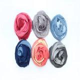 Le modèle neuf Main-A décoré l'écharpe de couleur de gradient