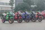バイクの速度のバイクを競争させる200cc 250cc 350ccのスポーツのバイク