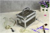 Form-Aluminiumlegierung-Verfassungs-Kasten mit Spiegel-Schmucksache-Kasten