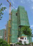 De Kraan van de Toren van de bouw met tc-446 en met Maximum van Hoogte van 220m